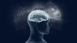 Lifelong Deep Neural Networks
